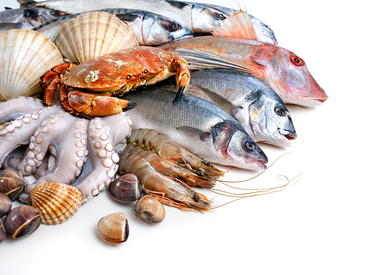 Seafoods Fish Food Shrimp Crabs White background 560013 1280x914